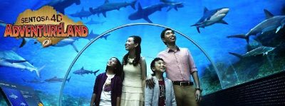 1 Day Pass + S.E.A aquarium entry best combined offer for theme park singapore