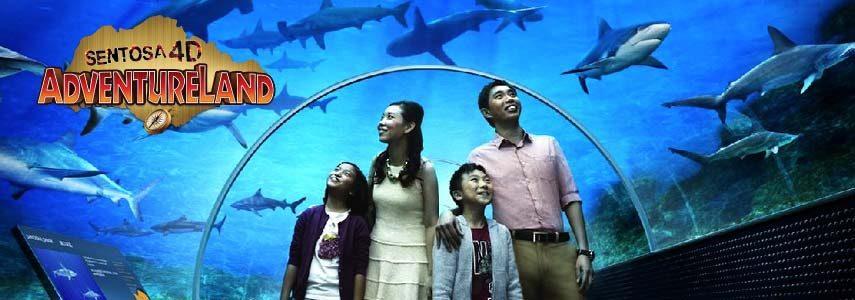 1 Day Pass + S.E.A aquarium entry best combined offer for theme park singapore