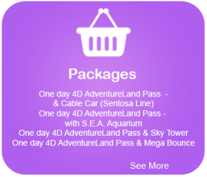 packages available at 4d Adventureland